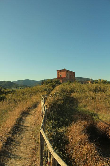 3.Casa_Ximenes,_Diaccia_Botrona,_Castiglione_della_Pescaia