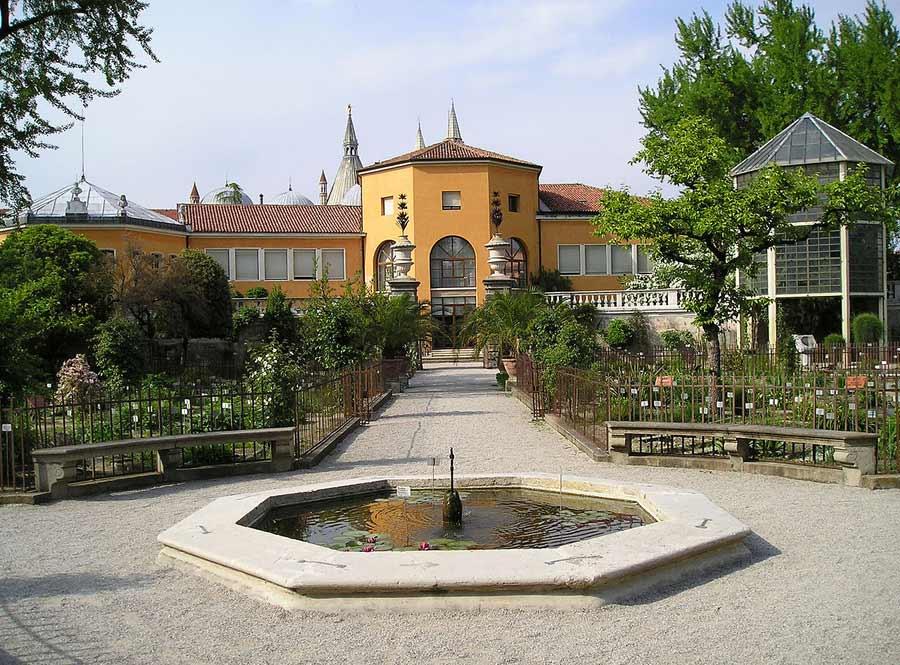 Padua Botanical Garden Unesco site