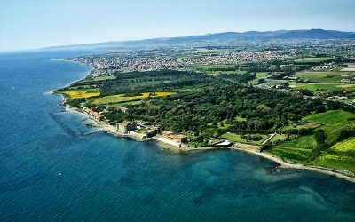 Discover the Etruscan civilization in Tarquinia and Cerveteri